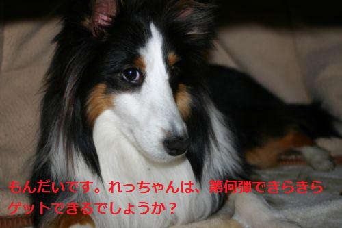 IMG_2368.jpg