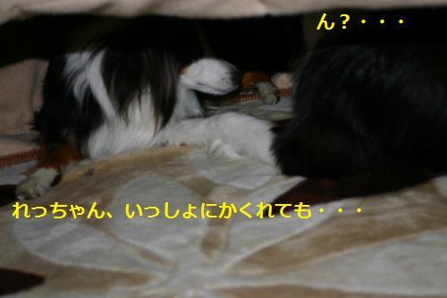 IMG_2372.jpg
