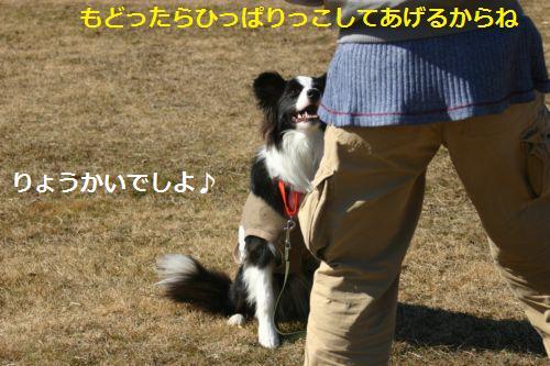 IMG_2690.jpg