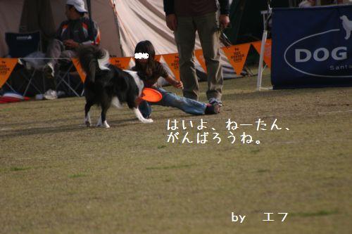 IMG_8947.jpg