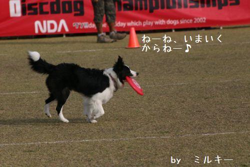 IMG_8956.jpg