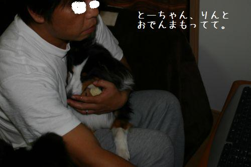 IMG_9730.jpg