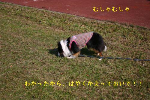IMG_9810.jpg