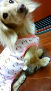 パジャマ ②