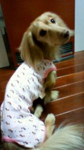 パジャマ ①