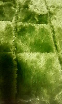 201011182116000.jpg