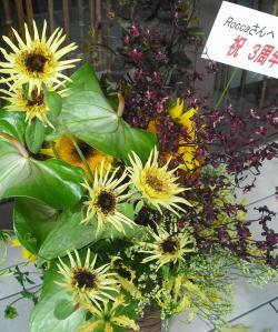 3shuu2_convert_20110515193110.jpg
