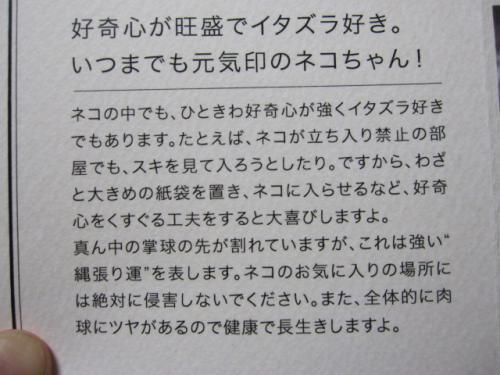 肉球占い鑑定書3