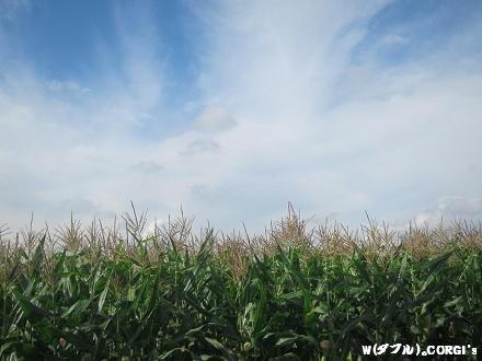 2011102501.jpg