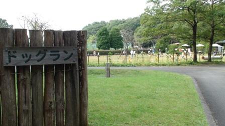 森林公園ドッグラン