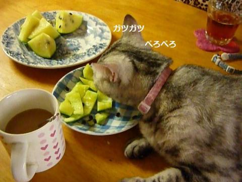 食いしん坊001