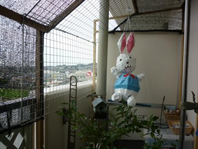 ベランダのウサギ009