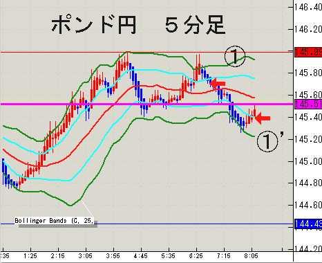 20090129_09.jpg