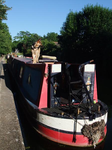 narrowboat3011.jpg