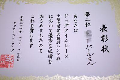 IMGP4626.jpg