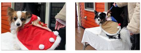 1213クリスマス仮装