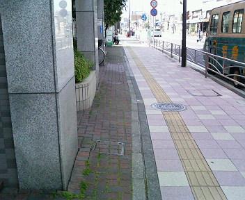 P1007679.jpg