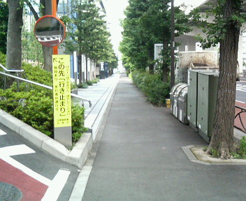 P1007827.jpg