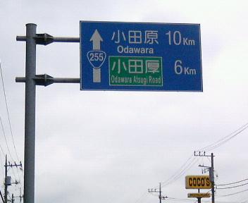P1007896.jpg