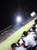 ラグビー観戦0