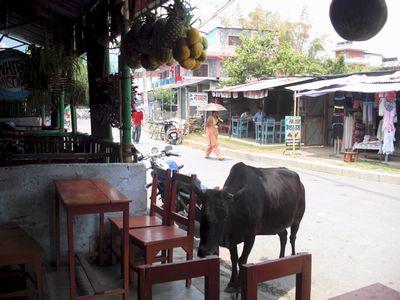 pokhara02.jpg