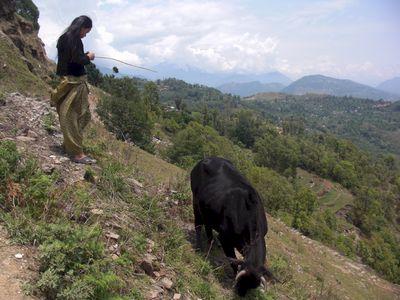pokhara07.jpg