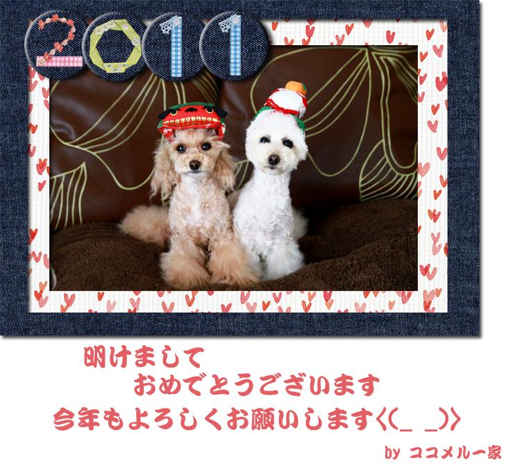 2011 あけおめ
