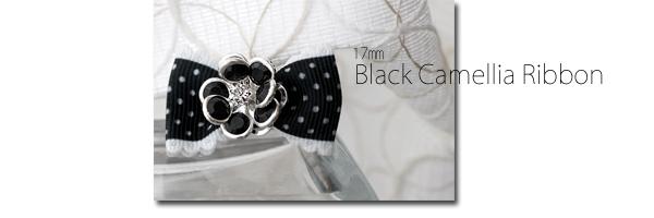 17ブラックカメリアシルバー