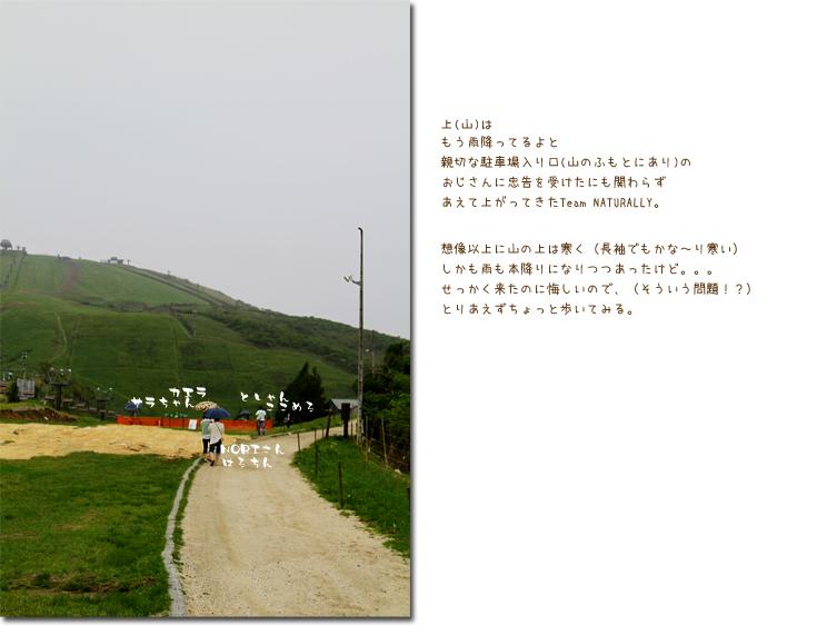 雨の琵琶湖バレイで歩こうの