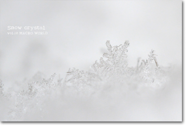 Snow-crystal-3.jpg