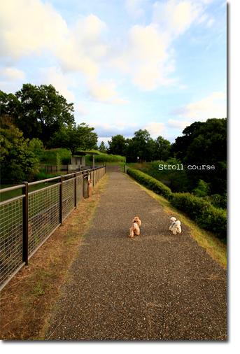 Stroll-course.jpg