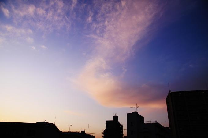 20100130IMG_0408.jpg