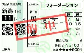 2010年8月29日新潟11R新潟記念