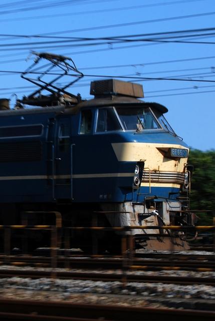 DSC_7967.jpg