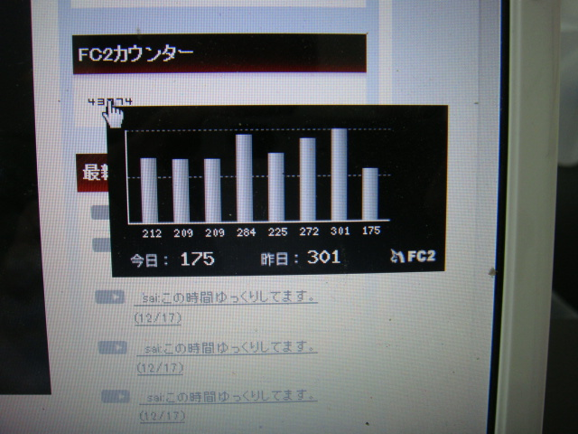 2010_1217_194417-DSC02740.jpg