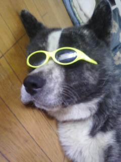 さじメガネ