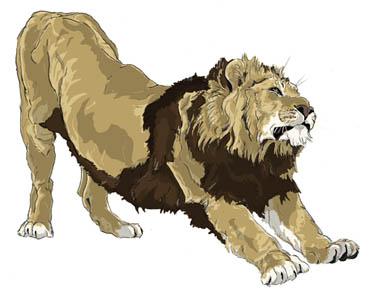 ライオンのび~