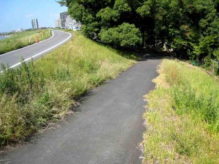 高牟神社周辺 道路と坂道