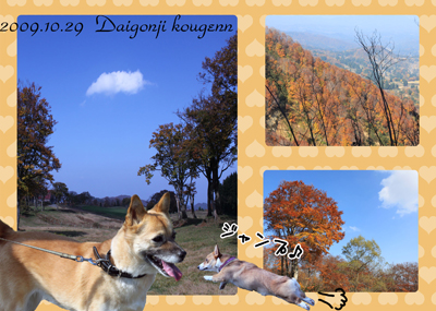 daigonji.jpg