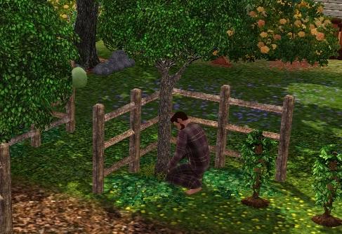 gnome_farm1.jpg