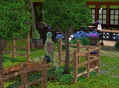 gnome_farm2.jpg
