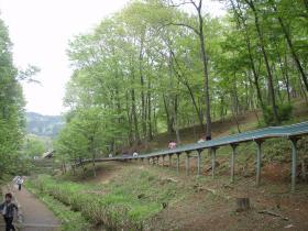 花木園滑り台2