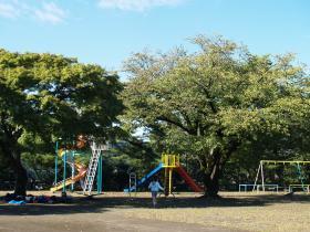 永山公園遊具