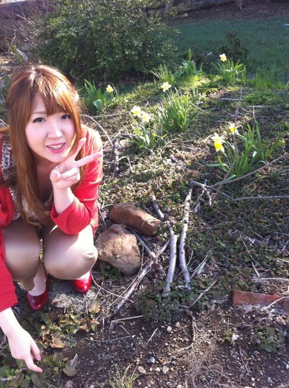 moblog_f9a254ff.jpg