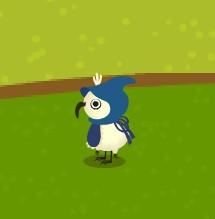 salutbird0901_2010-01.jpg