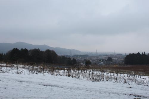 山からの眺める民家