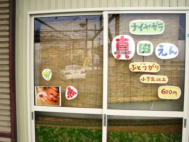 ぶどう園堆肥蒔き& 秋 016