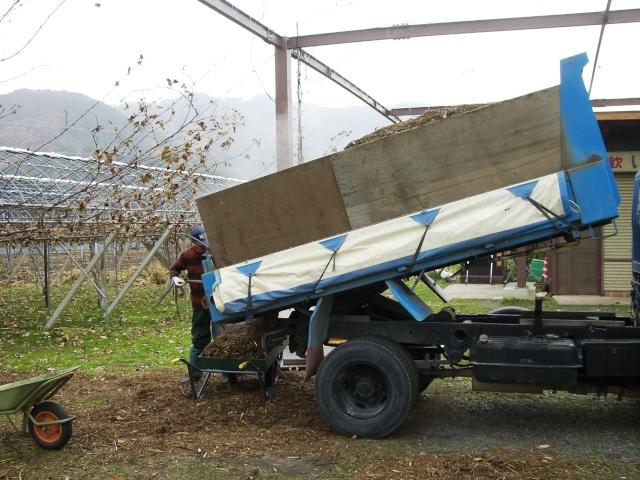 ぶどう園堆肥蒔き& 秋 022