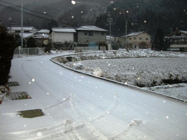 ホワイトクリスマス 001