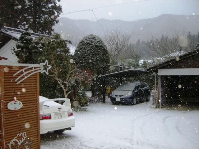 ホワイトクリスマス 004